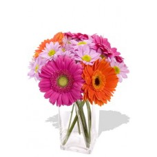 9pcs Mixed Gerbera and Chrysanthemum Vase Bouquet