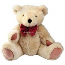 Lovely Teddy Bear (10 Inches Height)